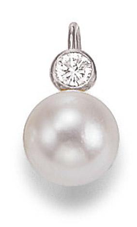 Ohrringe für Frauen - SIGO Ohrringe 585 Weißgold Diamant Süßwasser Perle 7 mm  - Onlineshop Goettgen
